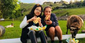 Kiwi Kids in Korea: Local School's New Cultural Exchange